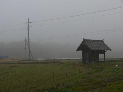 霧深き朝P.jpg
